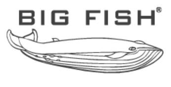logo big fish